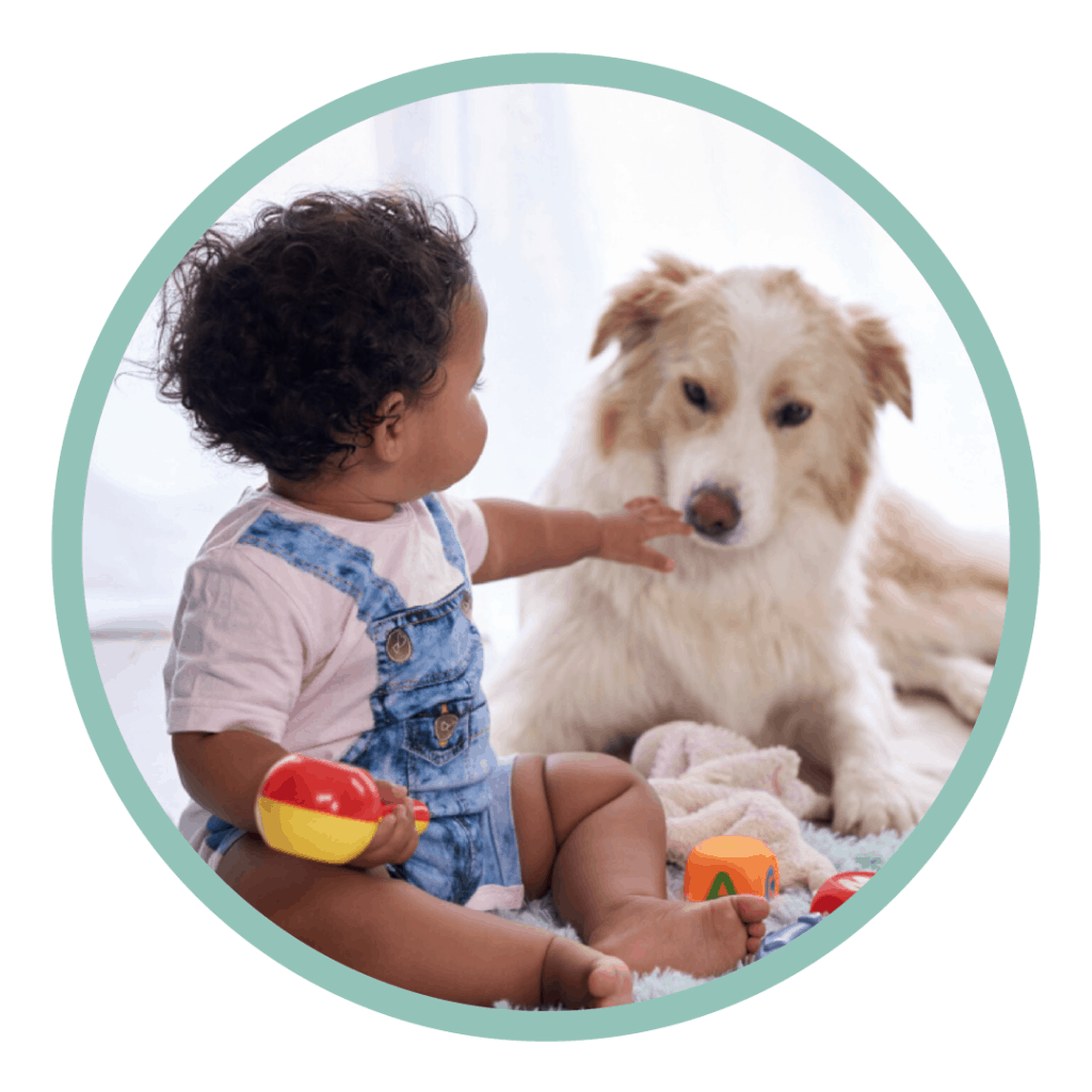 dogs and babies baby dog mouth hand reach