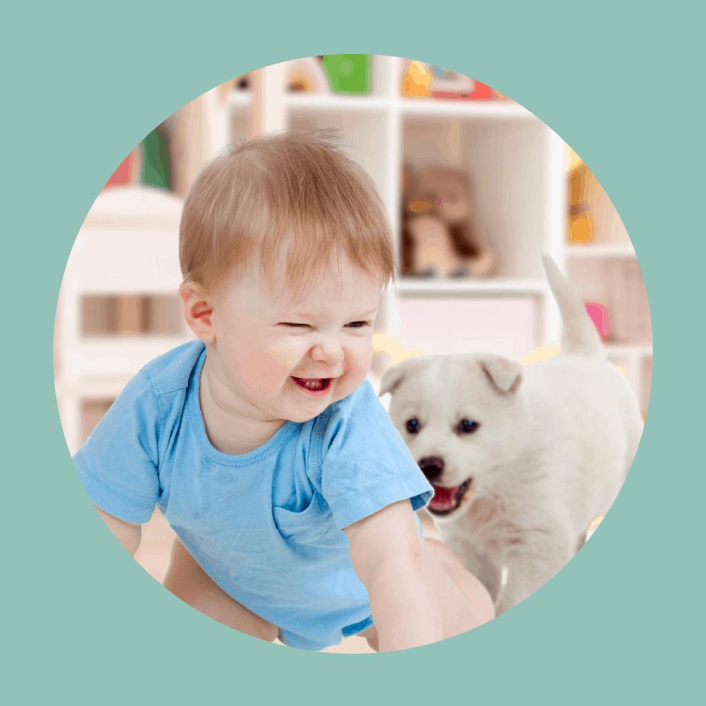 dog chasing baby